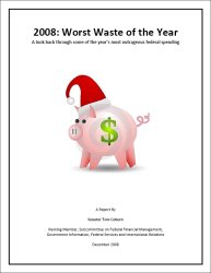 2008: Worst Waste of the Year