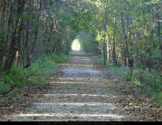 Flint Hills Nature Trail - Osawatomie - In places the trees overhang the trail making a green tunnel.