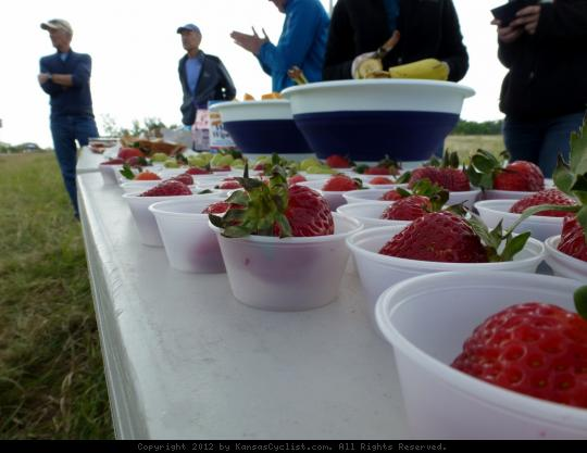 SAG Spread - A table full of strawberries, grapes, bananas, and other goodies await cyclists on the Kansas City Metro Bicycle Club's annual Spring Classic bicycle ride near Olathe, KS.