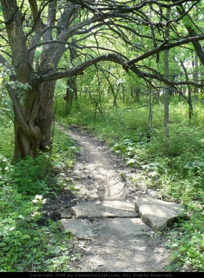 Shawnee Mission Park Trail - A very small stream crossing at the Shawnee Mission Park mountain bike trail system.