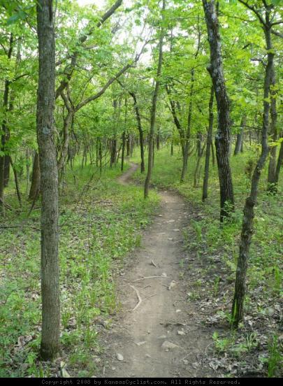 Shawnee Mission Park Trail - A fast and smooth section of the Shawnee Mission Park mountain bike trail system, running through the trees in early Spring.