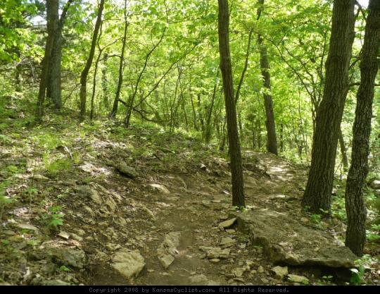 Shawnee Mission Park Trail - A rocky section of the Shawnee Mission Park mountain bike trail system.