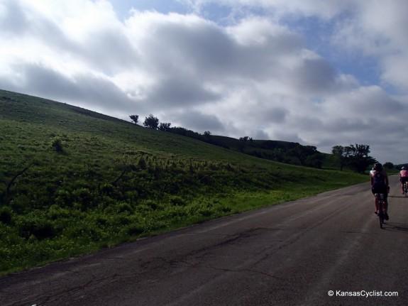 Kandango-2014-3-HumboldtCreekRoad