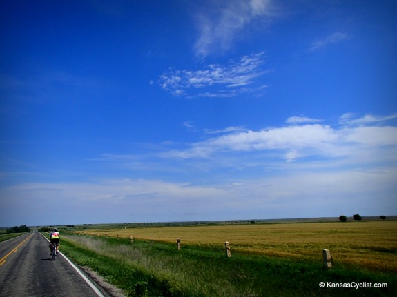 Riding alongside fields of ripening wheat, north of Bunker Hill