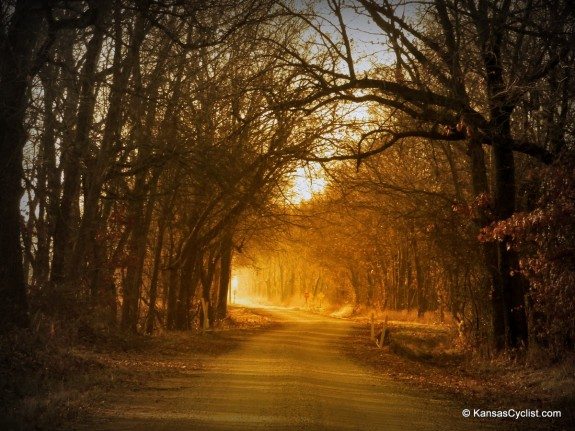 Golden Glow Road