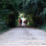 Southwind Rail Trail Group Ride