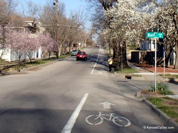 Wichita Bike Lane Jogger